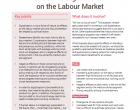 Policy Brief: Effects of Digitalisation on the Labour Market